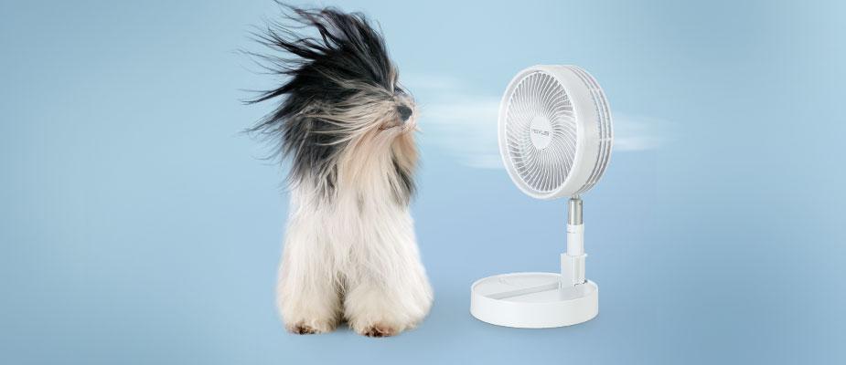 Zaboravite na letnje vrućine!